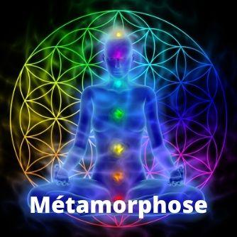 Métamorphose - Stage de formation APESRA