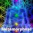 Métamorphose stage APESRA Approche Psychorporelle Energétique et Spirituelle de la Relation d'Aide