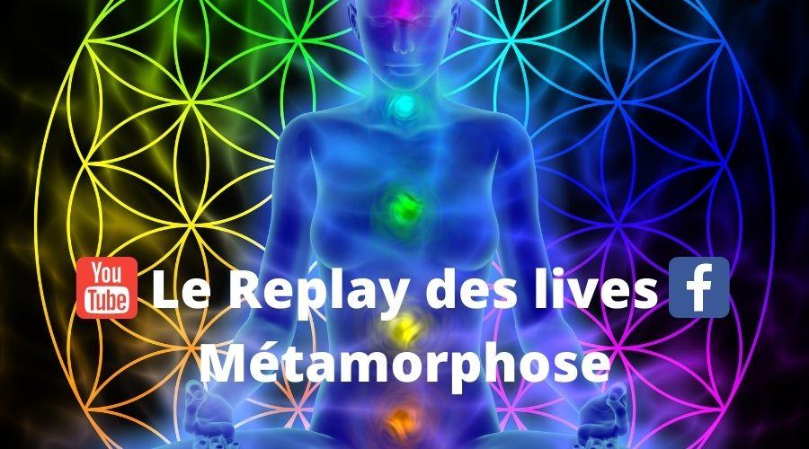 Les lives Métamorphose - APESRA